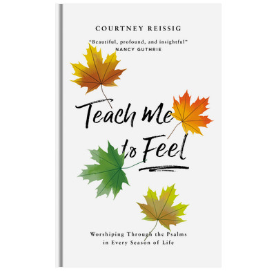 Teach Me To Feel (audiobook)