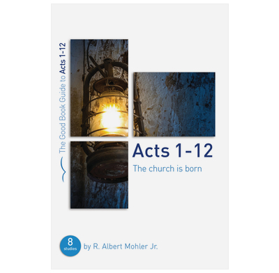 Acts 1-12: The Church is Born (ebook)