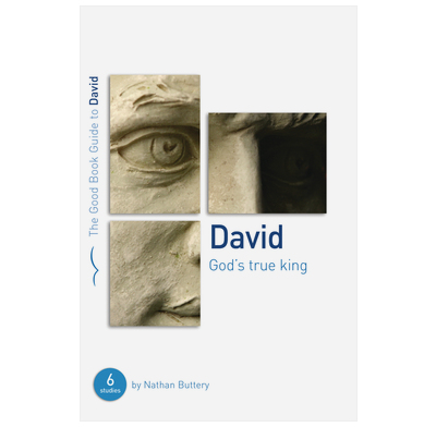 David: God's True King (ebook)