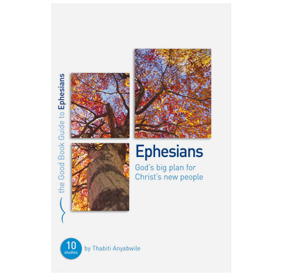 Ephesians: God's Big Plan for Christ's New People (ebook)
