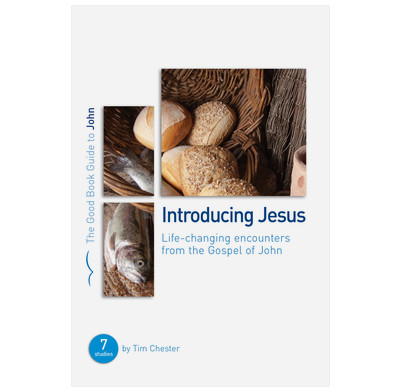 John: Introducing Jesus (ebook)
