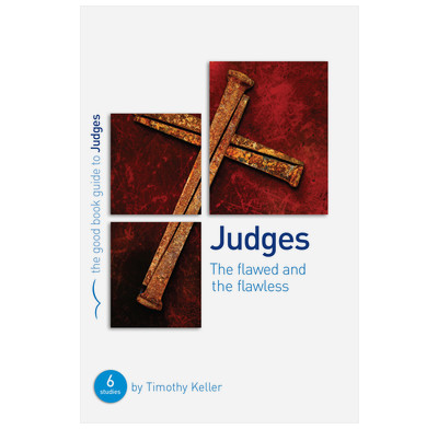 Judges: The flawed and the flawless (ebook)