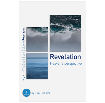 Revelation: Heaven's perspective (ebook)