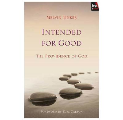 Intended for Good (ebook)