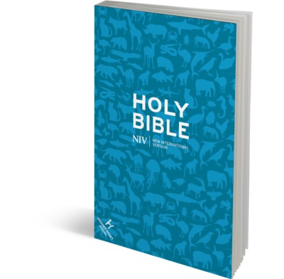 Pocket Bible (NIV)