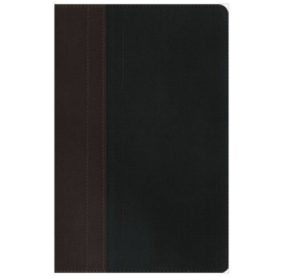 NIV Study Bible Brown/Tan Duo-Tone