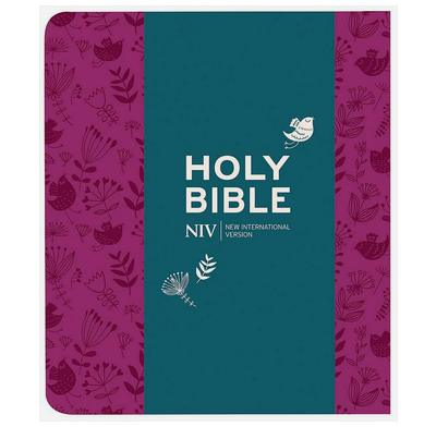 NIV Journalling Plum Soft-tone Bible with Clasp (New Edition)