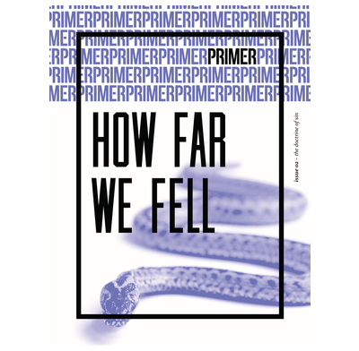 How Far We Fell - Primer Issue 2