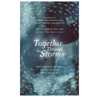 Together Through the Storms (audiobook)