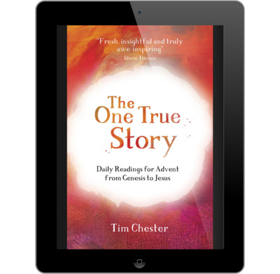 The One True Story (ebook)